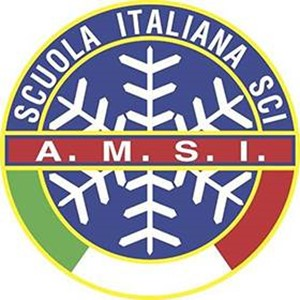 logo_amsi_q.jpg
